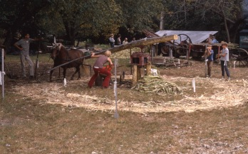 Charles Herman photographed Molasses Days events at the Thierer farm at Volland, Kansas in this view from the 1970s.