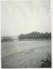 The roadblock where PFC Charlie Barnhart was wounded was located near the grove of trees visible along the horizon in this view. The abandoned building which held German troops is visible in the distance at the left side of the image.
