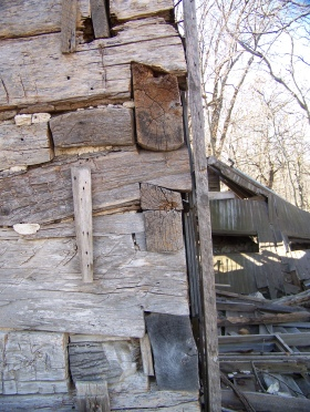 This 2014 view of the Hensel cabin shows the dove-tailing of the logs on the corners of the cabin.