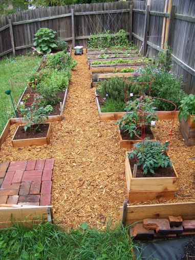 The vegetable garden as it appeared in this view from 2011 was very organized.