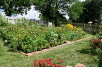 The nectar garden provides about 500 square feet of flowering plants for butterflies, hummingbirds and bees.